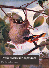 Oriole stories for beginners