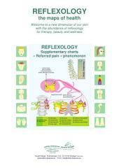 6 - «Referred pain» phenomenon: Reflexology supplementary charts
