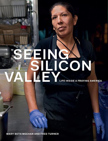Download Seeing Silicon Valley Book