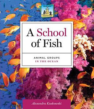 School of Fish Animal Groups in the Ocean PDF