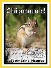 Just Chipmunks! vol. 1: Big Book of Photographs & Chipmunk Pictures