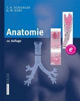 Anatomie PDF