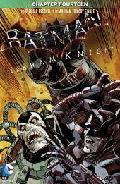 Batman: Arkham Knight (2015-) #14