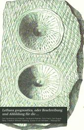 Lethaea geognostica, oder Beschreibung und Abbildung für die Gebirgs-Formationen bezeichnendsten Versteinerungen: Theil. Lethaea palaeozoica. 2. Bd., 1 Lief