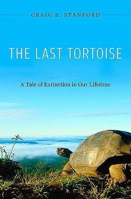 The Last Tortoise