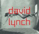 David Lynch  dark splendor PDF
