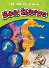 Life Cycle of a Sea Horse, The