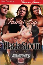 Black Storm [Panther Key]