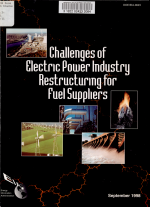 Challenges of Electric Power Industry Restructuring for Fuel Suppliers