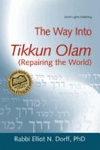 The Way Into Tikkun Olam PDF