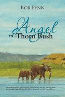 Angel in a Thorn Bush