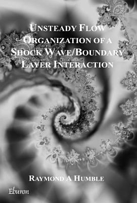 Unsteady flow organization of a SWBLI