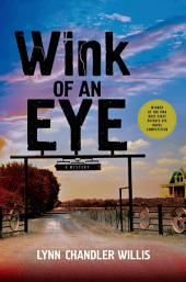 Wink of an Eye: A Mystery