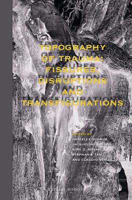 Topography of Trauma  Fissures  Disruptions and Transfigurations