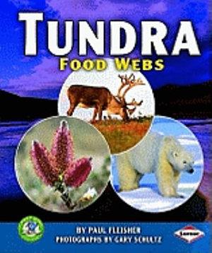 Tundra Food Webs PDF