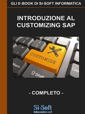 Introduzione al customizing SAP