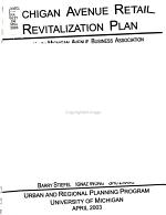 Michigan Avenue Retail Revitalization Plan PDF