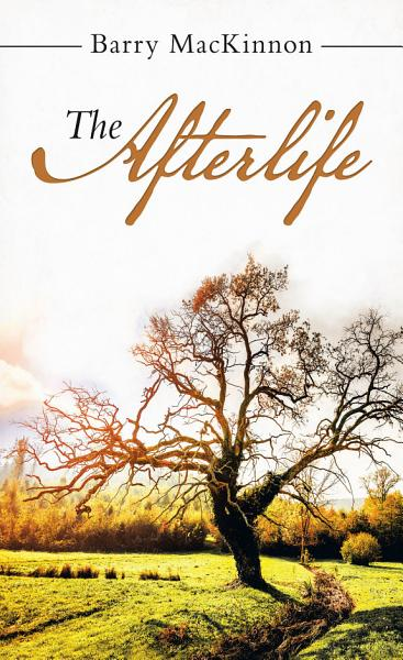 Download The Afterlife Book