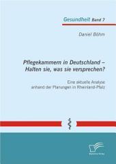 Pflegekammern in Deutschland ? Halten sie, was sie versprechen? Eine aktuelle Analyse anhand der Planungen in Rheinland-Pfalz