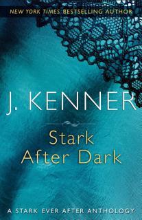 Stark After Dark Book