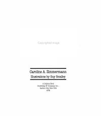 The Super Sneaker Book PDF