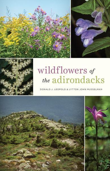 Wildflowers of the Adirondacks Pdf Book