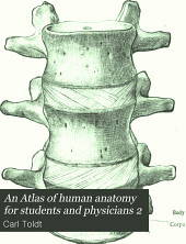 An Atlas of human anatomy for students and physicians 2: Volume 2