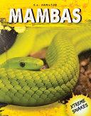 Mambas PDF