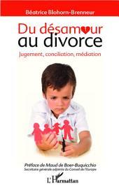 Du désamour au divorce: Jugement, conciliation, médiation