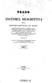 Corso di Anatomia Descrittiva