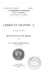 American Grasses