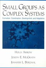 Small Groups as Complex Systems