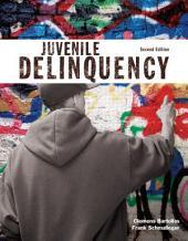 Juvenile Delinquency: Edition 2