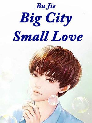 Big City  Small Love PDF