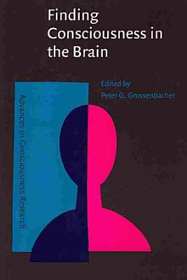 Finding Consciousness in the Brain
