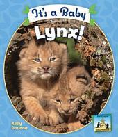 It's a Baby Lynx