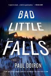 Bad Little Falls: A Novel