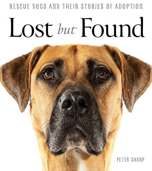 Download Lost But Found Book