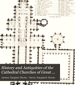 History and Antiquities of the Cathedral Churches of Great Britain: Salisbury. Gloucester. Hereford. Chester. Worchester. Lichfield. Carlisle