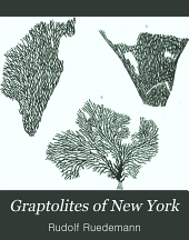 Graptolites of New York: Part 2
