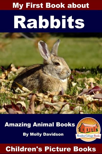 My First Book About Rabbits Amazing Animal Books Childrens Picture Books