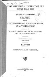First Deficiency Appropriation Bill: Fiscal Year 1920, Second Supplemental Hearing ... 66th Congress, 1st Session, Part 3: International Labor Conference