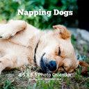 Napping Dogs 8.5 X 8.5 Photo Calendar January 2021 - December 2021