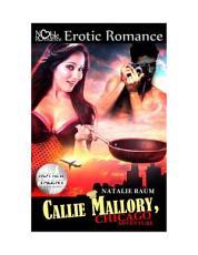 Callie Mallory   Chicago Adventure PDF