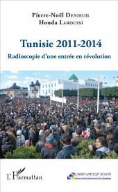 Tunisie 2011-2014: Radioscopie d'une entrée en révolution