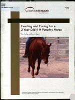 Feeding and Caring for a Three-year-old 4-H Futurityhorse