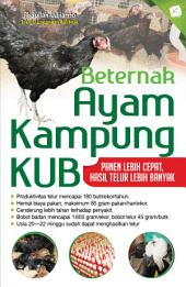Beternak Ayam Kampung Paling Unggul: Pedaging & Petelur KUB