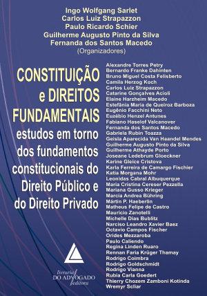 Constitui    o e Direitos Fundamentais  PDF