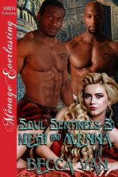 Soul Sentinels 3: Nehi and Menna