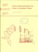 Flame Characteristics for Fires in Southern Fuels